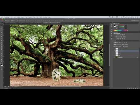 Photoshop Transformation Tutorial: Skew, Distort, Perspective, Warp