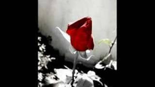 RUŽA CRVENA