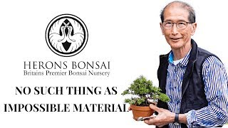How to make Bonsai from Impossible Material