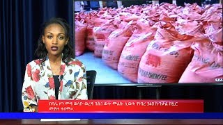 Ethiopian news in amharic HD Mp4 Download Videos - MobVidz