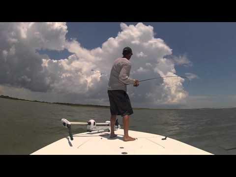 Summer Redfish Techniques: Charleston, SC