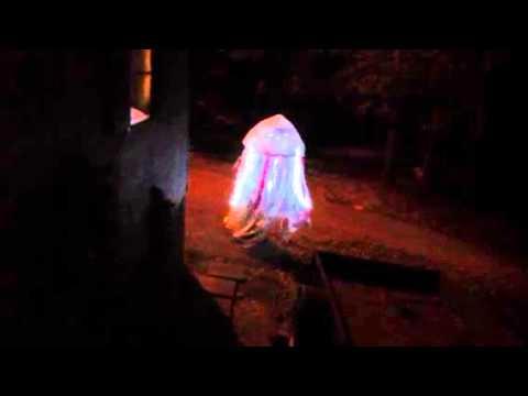 Homemade Jellyfish costume 2013