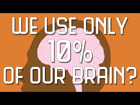 Do You Only Use 10% Of Your Brain?