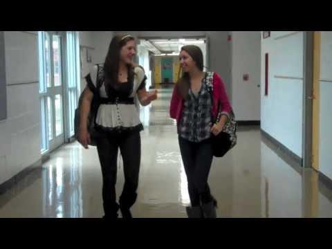 Lisle Junior High School Anti-Bullying Campaign-Dear Diary