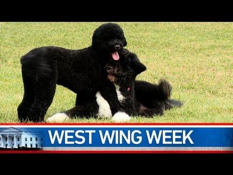 West Wing Week 08/23/13 or,