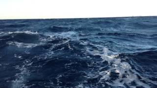 Fisker Olsen Dårlig vær uttafør Værøy