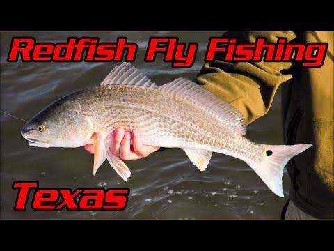 Redfish Fly Fishing - Laguna Madre Texas