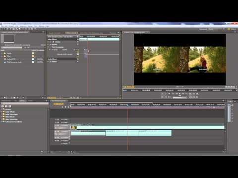 Premiere Pro - Using Speed/Duration and Time Remapping to change clip speed