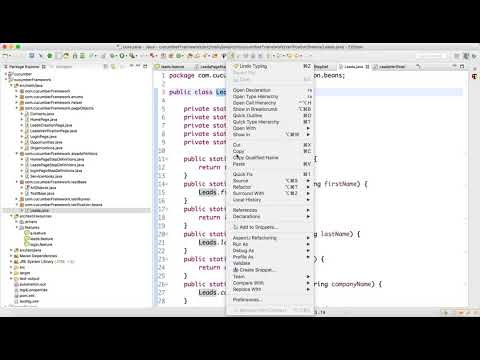 Feature File Executions and Assertion Video-14