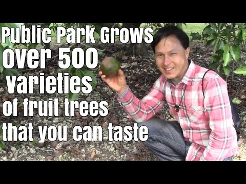 Public Park Grows Over 500 Varieties of Fruit and Spice Trees that you can Taste