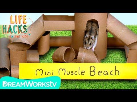 Hamster Jungle Gym + Other Small Pet Hacks   LIFE HACKS FOR KIDS