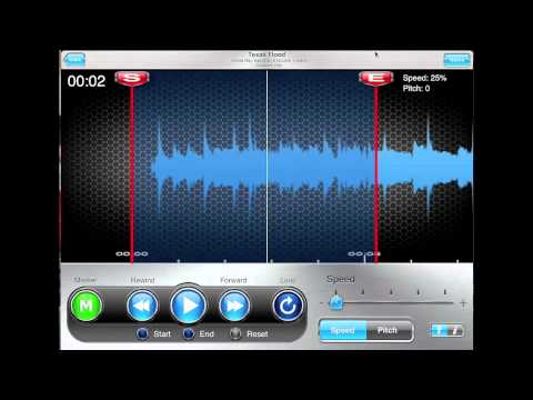 ipad riffmasterpro zoom function for pin point when slowing down songs
