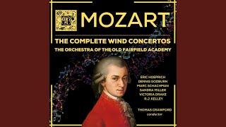 Concerto In Eflat Major K 417 1 Allegro