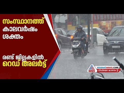 Xxx Mp4 Heavy Rain In Kerala Red Alert Issued In Two Districts 3gp Sex