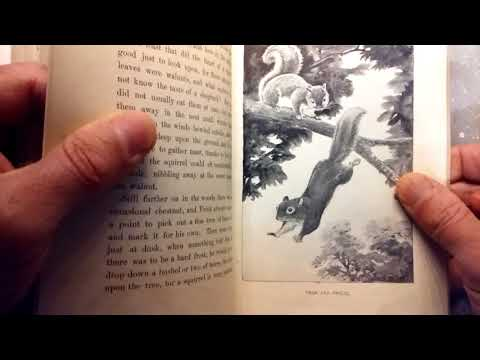 wonderful children's book illustrations 1900s: Charles Copeland