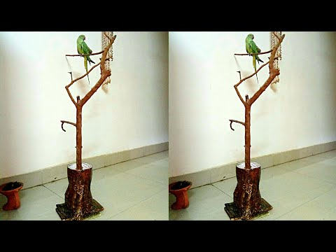 How to make Bird Stand for Parrot from Waste Plastic Bottle