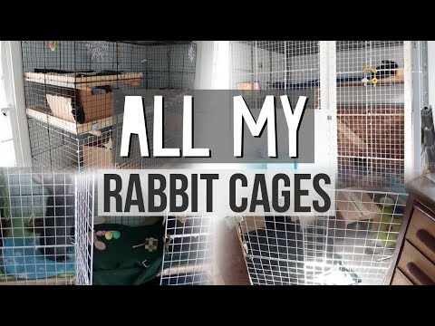 All My Different Rabbit Cages
