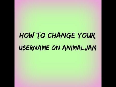 AnimalJam | How To Change Your Username
