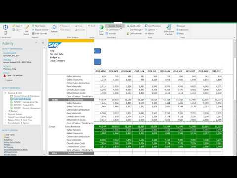 BPC 11.0 Demo Series:  Part 2-Revenue and Cost of Sales Budgeting