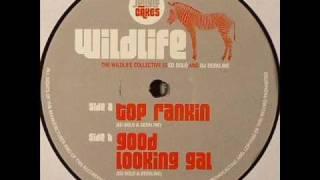 """Ed Solo & Deekline - Good Looking Gal [12"""" Vinyl - JC003]"""
