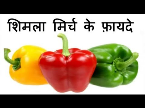 शिमला मिर्च के हैरान कर देने वाले फ़ायदे | Amazing Health Benefits of Capsicum.