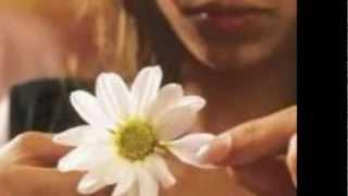 Super Lamas - Amor de verano (Javier Torres - Compositor).wmv