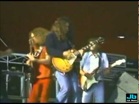 Lynyrd Skynyrd - Sweet Home Alabama (outdoor concert)