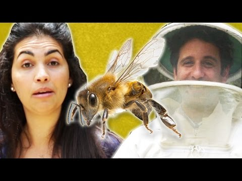 People Who Are Afraid Of Bees Meet Bees