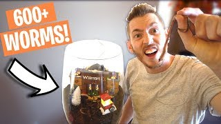 BUYING ALL THE WORMS FROM WALMART!