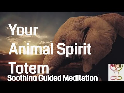 Meditation 10 Minutes Soul Searching Animal Spirit Totem Healing Guide Inner Calm Peace & Serenity