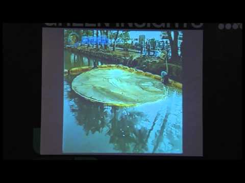 Green Insights @IGEM 2013 - NAC System (Cleaning of Dams, Lakes, Rivers and Waste Water Treatment)
