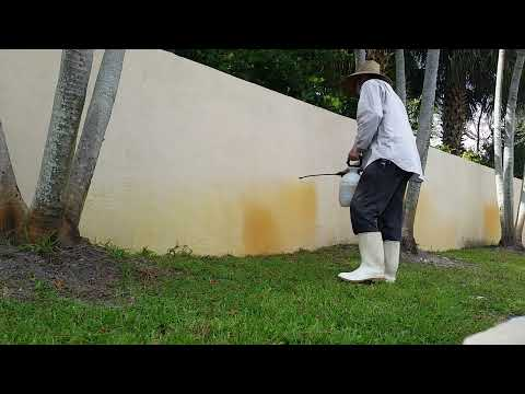 Well water stain removal in Palm Beach County, FL (not a how to) 561-781-4297