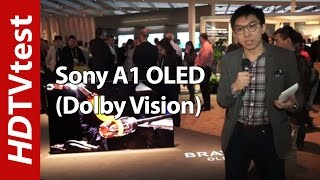 Sony A1/ A1E 4K OLED TV (Dolby Vision) at CES 2017