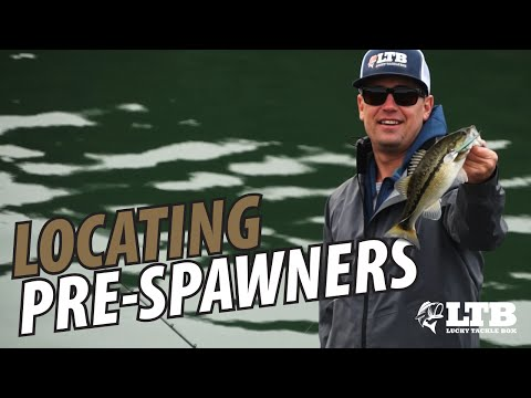 How To Locate Pre Spawn Bass: Lucky Tackle Box Tips
