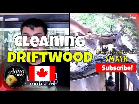 Preparing Aquarium Driftwood | How to Make Fish Tank Safe DIY Driftwood