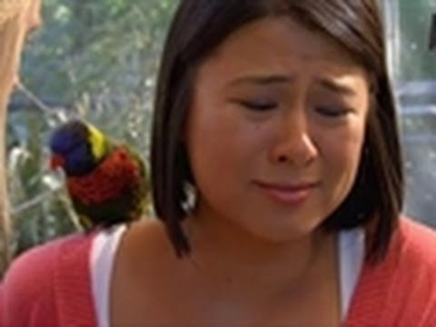 Woman Freaks Out Over Birds | My Extreme Animal Phobia