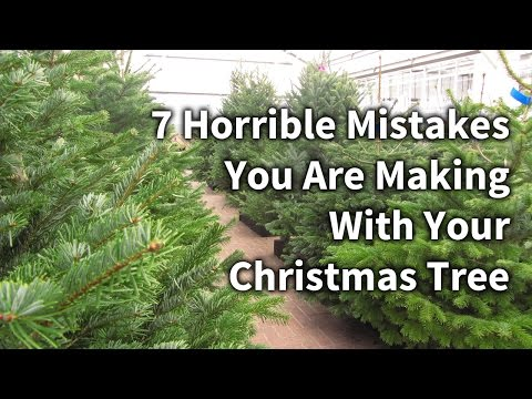 7 Mistakes You Are Making With Your Christmas Tree