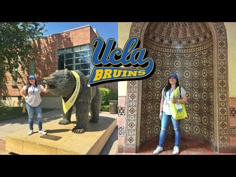 REACTION to UCLA Acceptance Letter