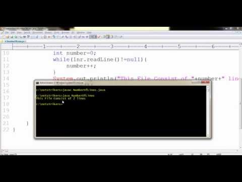 Java Programming Tutorial 40 - Calculate the Number of Lines in a File
