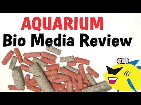 Aquarium Filter Media: Biofilter Media Review