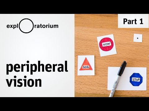 Test your peripheral vision and discover the outer limits of your eyes - Science Snacks activity