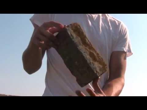 Cow dung bricks