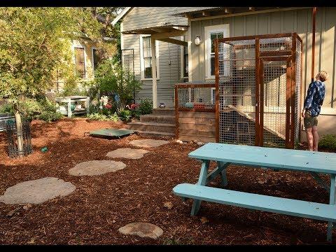 Catio, Garden for Dogs, Small Space Modern Design |Briana Miriani |Central Texas Gardener