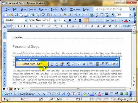 Word 3615-6 Headers and footers Microsoft Word 2003 ECDL ITQ2