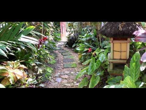 Queensland Organics Intro