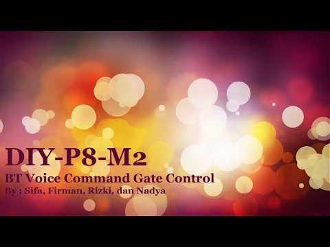 DIY-P8-M2-BT Voice Command Gate Control