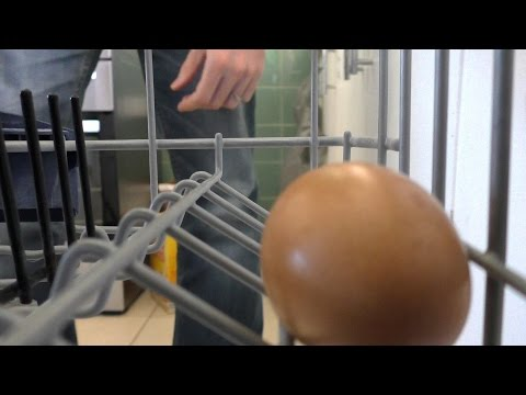 Dad Cooks Eggs in Dishwasher
