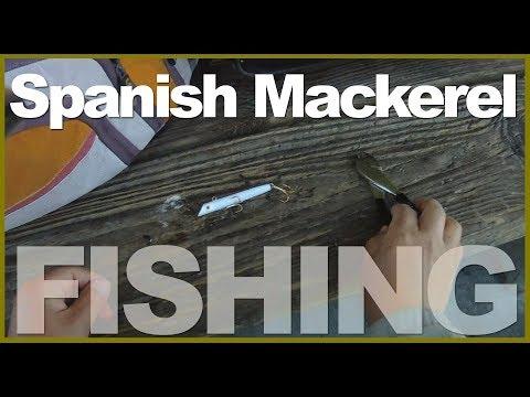 [Pier Fishing #26] Spanish Mackerel Fishing