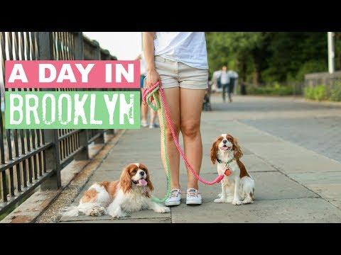A Day in Brooklyn Vlog | GoPro Dog Vlog