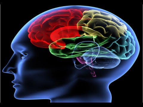 How to Improve Your Memory - Improve Memory And Focus Fast